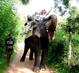 Надежда Введенская Шри Ланка