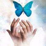 Здравствуй мир - Старт блога Надежды Введенской