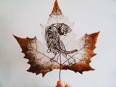 Картины вырезанные на листьях - 5