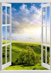 Окно - хорошее начало дня