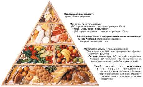 Функциональное питание - Пирамида питания