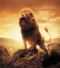Лев в Петле времени - лидерство