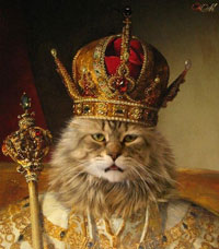 Лев в Петле времени – как не попасть