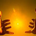 Чтобы жить на Земле живые организмы запасают энергию Солнца