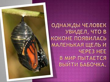 Притчи короткие: Рождение бабочки – 1