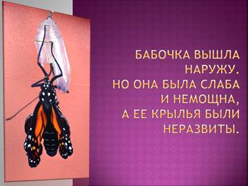 Притчи короткие: Рождение бабочки – 4