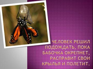 Притчи короткие: Рождение бабочки – 5