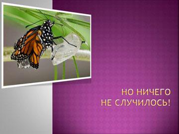 Притчи короткие: Рождение бабочки – 6