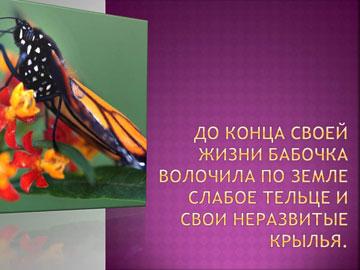 Притчи короткие: Рождение бабочки – 7
