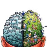 Развиваем полушария головного мозга (часть 1)
