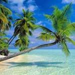 Загадочный остров Шри-Ланка – кусочек рая на Земле