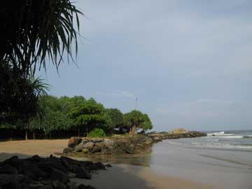 Остров Шри-Ланка – Утро под пальмами